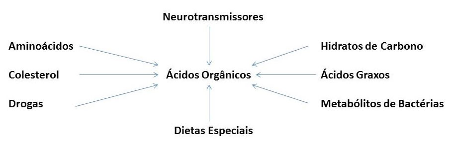 Perfil Organix Completo - Ilustração